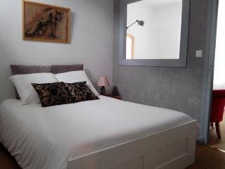 VINCI, Cosy Apt with Terrace in Heart of Amboise - Amboise vacation rentals