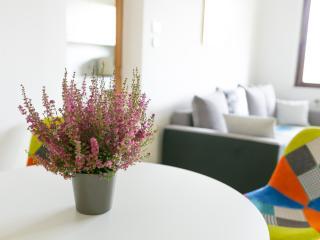 Bright & Big Gardenapartment 15 minutes to Vienna - Stockerau vacation rentals