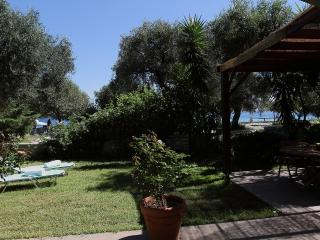 60m2 APARTMENT IN ITS OWN GARDEN 50M FROM SEA - Barbati vacation rentals