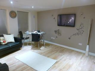 2 BR Bayswater/Hyde Park - London vacation rentals