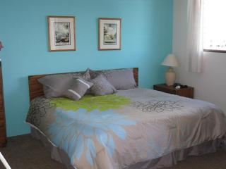 Gary's Place Waikiki ~ Integrity/Location/Value! - Honolulu vacation rentals