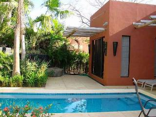 Nice private home- full kitchen, cable, BBQ, a/c, private pool - Tamarindo vacation rentals