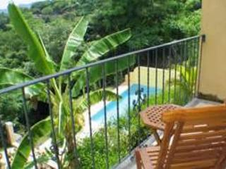 Awesome oceanview condo on hillside, cable, kitchen, a/c, shared pool - Tamarindo vacation rentals