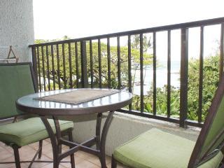 Maunaloa Shores 306 - Hilo vacation rentals