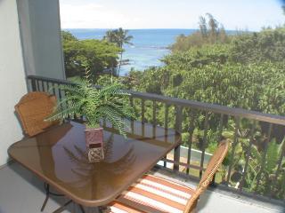Maunaloa Shores 508 - Hilo District vacation rentals