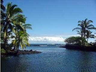 Champagne Pond Cottage - Kalapana vacation rentals