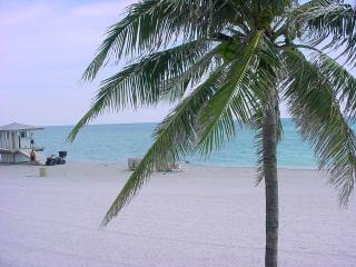 Sunny Isles - Sunny Isles Beach vacation rentals