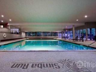 Simba Run 2313 - Vail vacation rentals