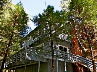 Rainbow Trout Lodge - close to Village and lake - Crestline vacation rentals