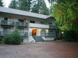 Snowline Lodge - Condo #88 - Sleeps two - close to the mountain! Now has WIFI! - Glacier vacation rentals