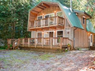 Snowline Cabin #49 - A great 2-story vacation home with a Private outdoor hot tub ! - Glacier vacation rentals