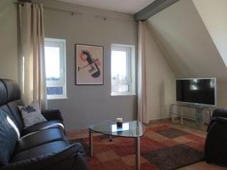 LLAG Luxury Vacation Apartment in Miltenberg - 646 sqft, new, stylish, magnificent (# 4295) - Miltenberg vacation rentals