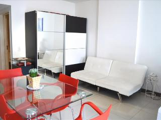 Modern Studio Palermo 6 MB Wifi! - Buenos Aires vacation rentals
