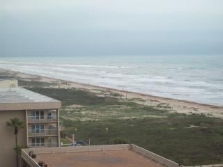 Aquarius #801, South Padre Island, Texas, - South Padre Island vacation rentals