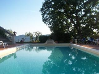 Villa Pia *LAST MINUTE OFFER IN MAY!* - Sarzana vacation rentals