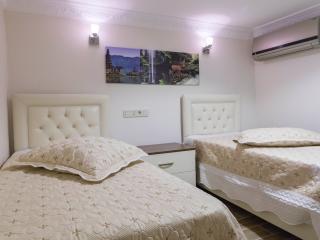 Zendy Suite Hotel Talimhane Beyoglu Istanbul - Istanbul & Marmara vacation rentals