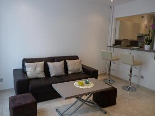 Montana One - Cannes vacation rentals