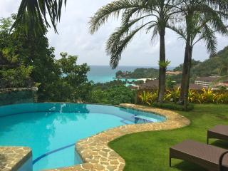 Spacious 4-Bedroom Apartment with Seaview 1 - Boracay vacation rentals
