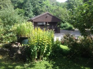 Penycoed Log Cabin Holidays with private hot tub - Oswestry vacation rentals