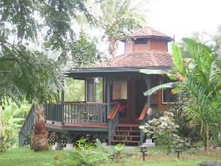 Zen Lite - Puna District vacation rentals