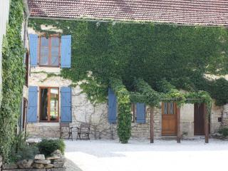 19th Century House with Views of Burgundy Vineyard - Mussy-sur-Seine vacation rentals
