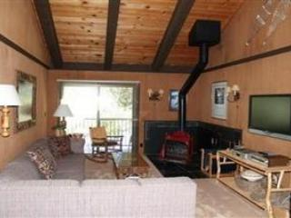 Mandala - SFL #21 - Image 1 - Tahoe City - rentals