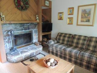 Vantage Point-36 - Stratton and Bromley Ski Areas vacation rentals