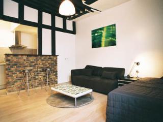 1st Arrondisement Studio (2388) - Paris vacation rentals