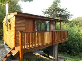 Nyth Y Wiwer (squirrels nest) - Beaumaris vacation rentals