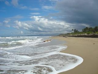 Tropical Beachfront Apartment, Cabarete - Cabarete vacation rentals