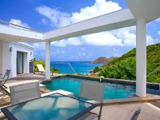 Hillside Magic Bird offers ocean views, open living to pool & deck, walk to beach - Flamands vacation rentals