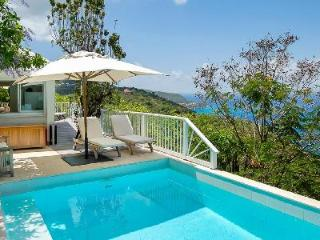 Set in the hills, villa Seaview offers panoramic views, pool  & central location - Colombier vacation rentals