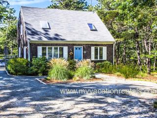 NIEJE - Dodgers Hole, Wifi Hi Speed Internet - Edgartown vacation rentals