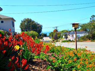 Muirlands - La Jolla Home w/ Beautiful Garden - La Jolla vacation rentals