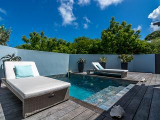 Villa Ti rêve - Saint Barts - Grand Cul-de-Sac vacation rentals