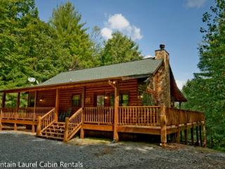 LAZY BEAR LODGE- Located 15 minutes from downtown Blue Ridge - North Georgia Mountains vacation rentals
