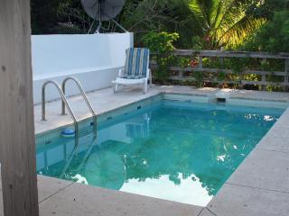 Longford Hideaway Greathouse: 3BR, pool, OG farm - Christiansted vacation rentals