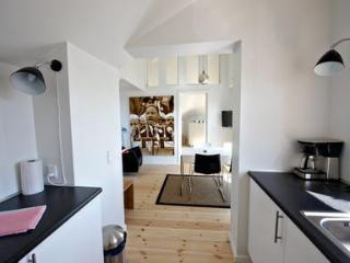 Spacious apartment with high ceilings. - Jutland vacation rentals