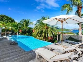 Spacious La Desirade offers ocean views, intimate pool terrace & walk to beach - Saint Jean vacation rentals