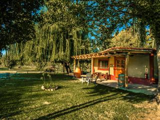 Villas in the heart of the mendoza wine country - Tupungato vacation rentals
