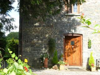Lletty Cottage - Llandovery vacation rentals