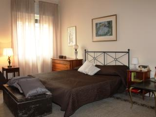 New! Beautiful, 5 minutes from Vatican Museum - Rome vacation rentals