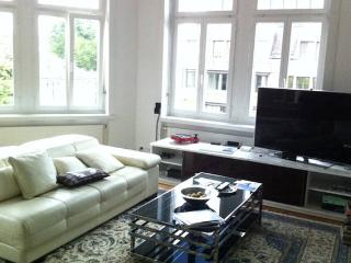 Perfect Room in the Heart of Zurich - Zurich Region vacation rentals