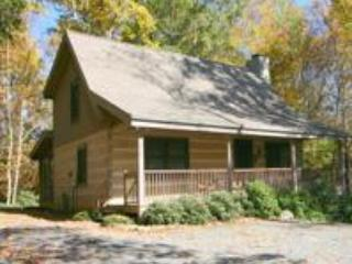 KingFish Cabin - 2/2,  wood fireplace,  2 porches - Boone vacation rentals