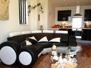 SA1 Waterfront Apartments - Swansea vacation rentals