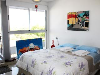 Pretty apartment in Guatemala and Armenia st - Palermo Soho (262PAS) - Buenos Aires vacation rentals