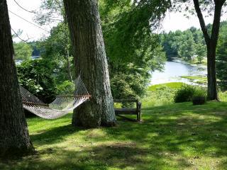 Upper Delaware River Valley Mid-century Lake House - Yulan vacation rentals