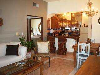 Tropical Penthouse with jacuzzi - Playa del Carmen vacation rentals
