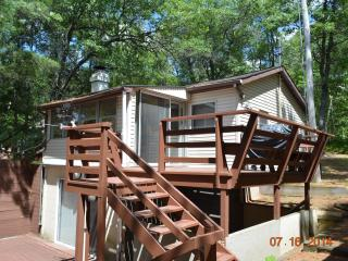 Backwoods Resort Cabin 2 - Iron River vacation rentals