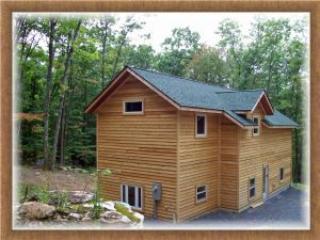 Red Pine - Image 1 - McHenry - rentals